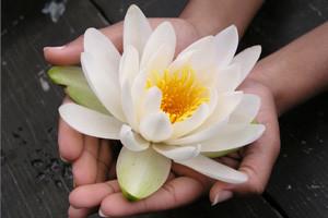 spirituality-treatment